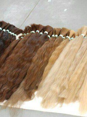 Южно-русские волосы в срезах